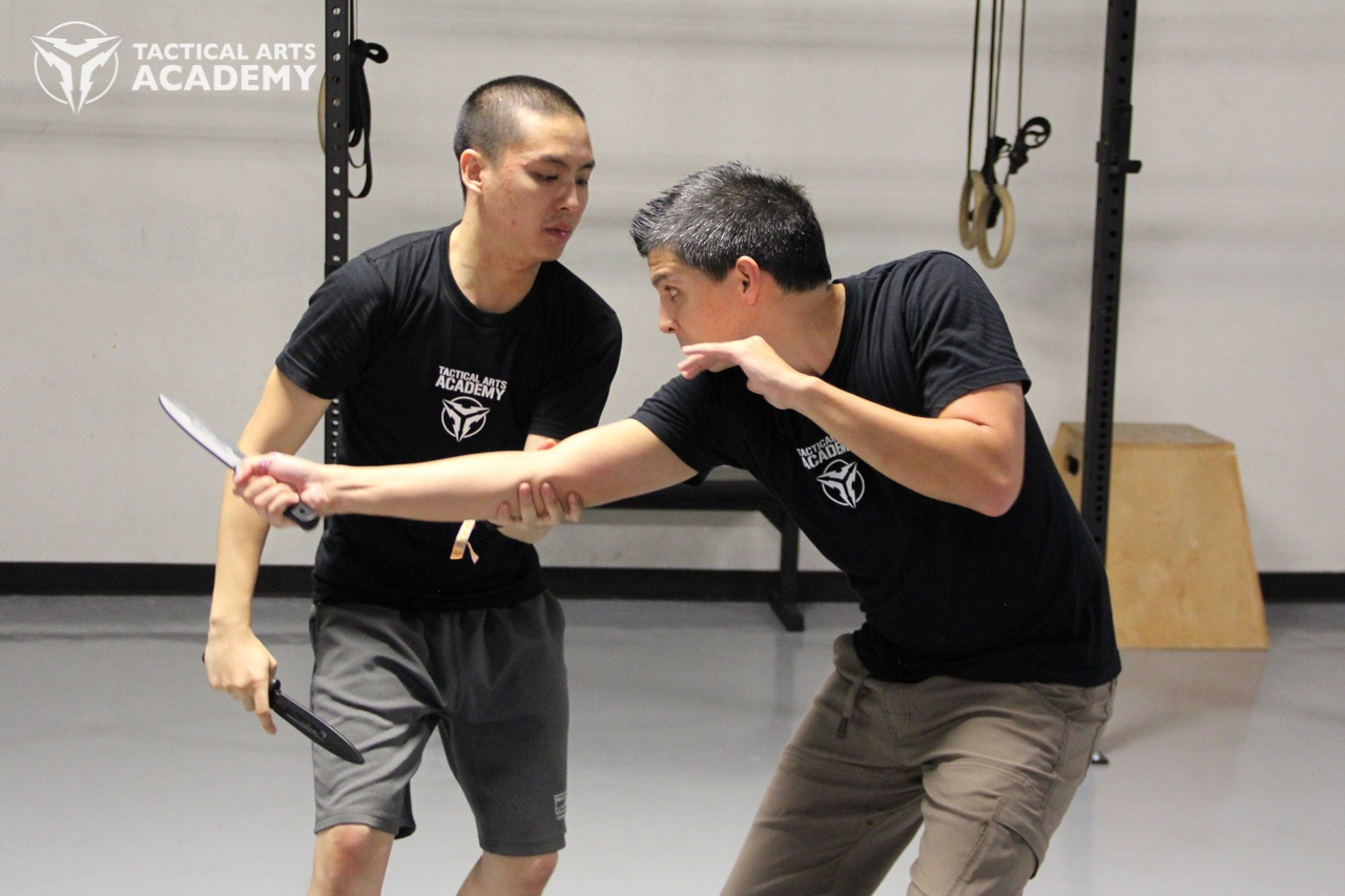 Learn One, Learn them All - Commonality of Motion and Skill Transferability in the Filipino Martial Arts